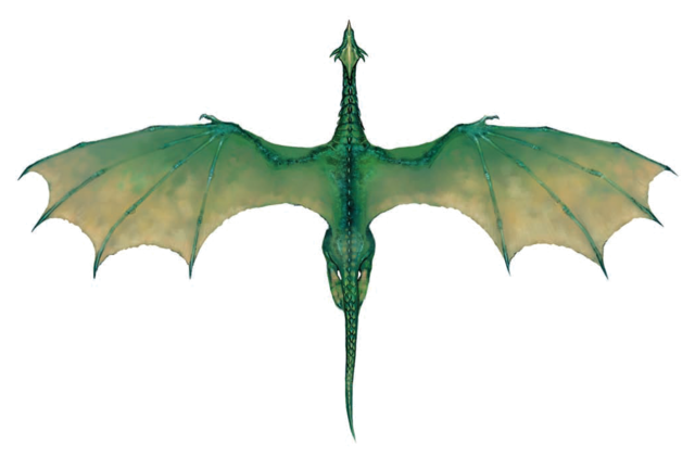 File:Green Dragon (overhead).png