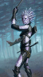 Genasi Sword Mage Female