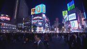 Shibuya0