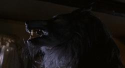 Ryanwolf rears its head
