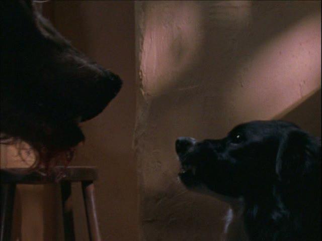 File:Sam with werewolf.jpg