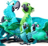 Toothpaste and Kiwi family!