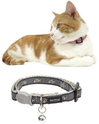 File:Cat collar.jpg