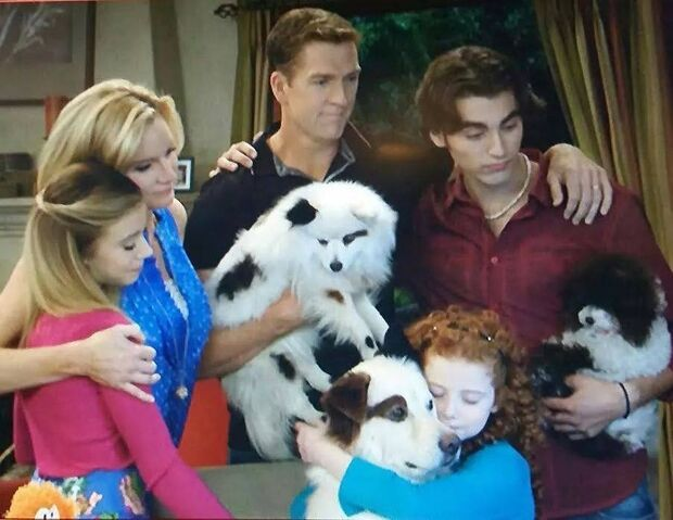 File:Family & Puppies.jpg