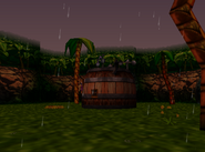 Jungle Japes - Storm