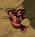 Redbird taking flight