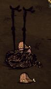 Dead Tallbird
