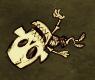 Skeleton lying