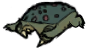 File:Dead Frog.png