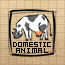 Domestic animal