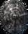 Shield ryndor