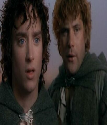 File:Frodo and Sam short pic.jpg