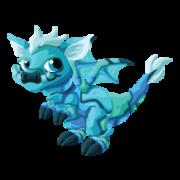 Turquoise Juvenile