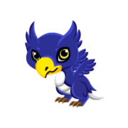 Hippogriff Baby
