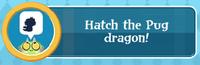 Hatch the Pug Dragon