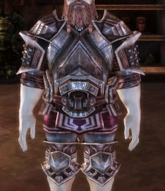 File:Everd's Armor.png