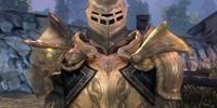 Cailan's armor set