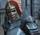 Codex entry: Knight-Commander Meredith