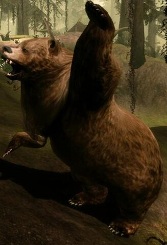 File:Creature-Bear.jpg