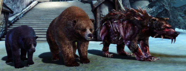 File:Bear Essentials.png