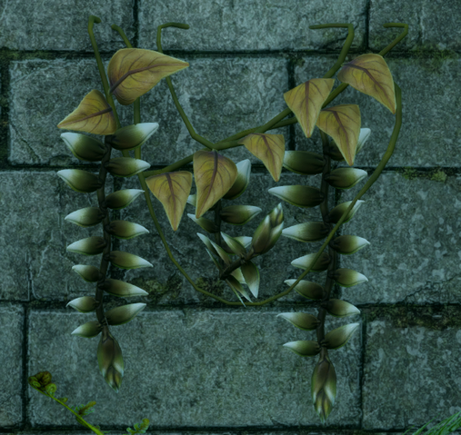 File:Arbor Blessing.png