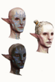 Inquisition Arlathan Elves concept 1.png