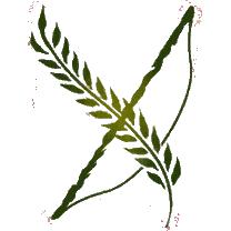 File:Dalish DA2 B heraldry.png