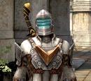 Ser Isaac Armor
