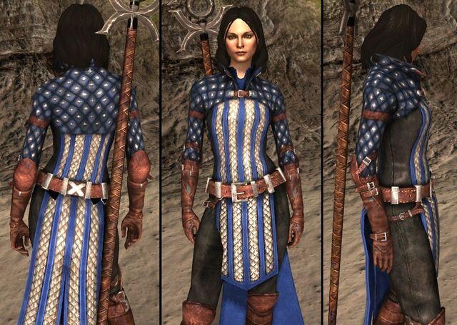 File:DA2 Bethany's Grey Warden Robes - companion armor.jpg