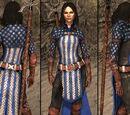 Bethany's Grey Warden Robes