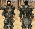 Commissioned plate armor da2.png