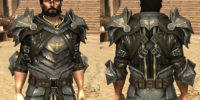 Commissioned Plate Armor