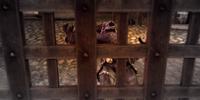 Free the Ogre