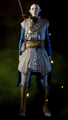 Superior-Enchanter-Armor-Solas.png