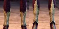 Ariane's Favorite Boots