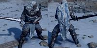 Skywatcher's Lamellar Armor