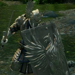 A Senior Warden in battle