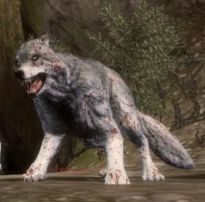 File:Creature-Wolf.jpg