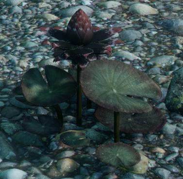 File:Black Lotus.png
