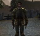 Scale armor set