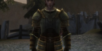 Scale armor set