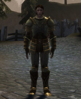 Scale armor set.png