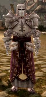 TemplarArmor