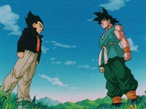 File:Goku and Vegeta enddbz.jpg