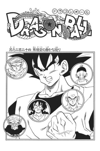 Arquivo:The Quiet Wrath of Son Goku.jpg