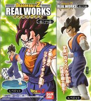 RealWorks2Vegetto