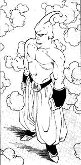 SuperBuu1