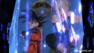 DBXV Crack of Time Goten & Trunks - Fusion Dance 071