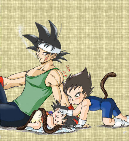 File:Bardock, Goku, and Vegeta.jpg
