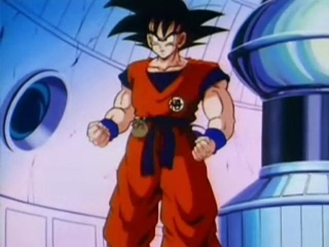 File:Goku After His Training.JPG